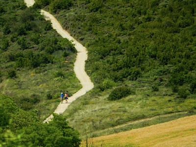 Photograph - Long And Winding Camino by Mike Shaw