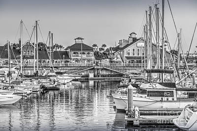 Photograph - Long Beach Rainbow Marina Boats by David Zanzinger
