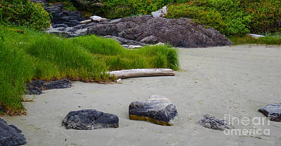 Photograph - Long Beach Tofino Bc by Calvin Fannin