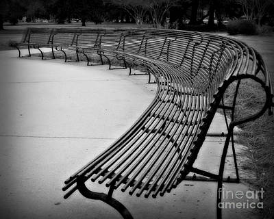 Webster Park Photograph - Long Bench by Perry Webster