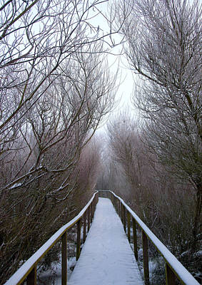 Wolf Digital Design Photograph - Long Bridge by Svetlana Sewell