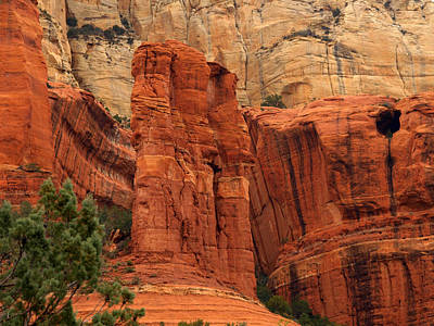 Photograph - Long Canyon Trail by James Peterson
