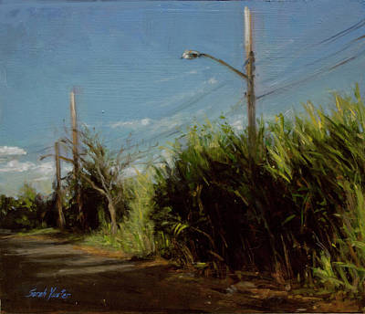 Painting - Long Grass On A Beach Road by Sarah Yuster
