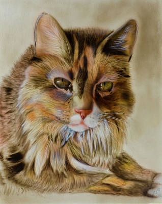 Painting - Long Haired Cat by Bas Hollander