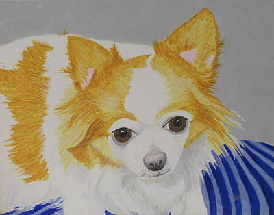 Painting - Long-haired Chihuahua by Hilda and Jose Garrancho