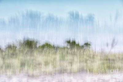 Photograph - Long Island Dunes by Alissa Beth Photography