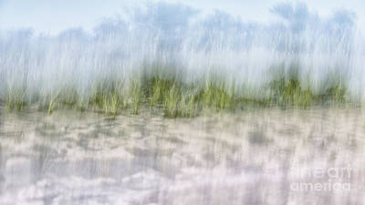Photograph - Long Island Grassy Dunes by Alissa Beth Photography