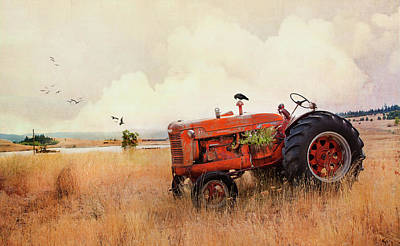Photograph - Long Lake Tractor by Theresa Tahara