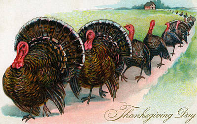 Painting - Long Line Of Thanksgiving Turkeys by American School