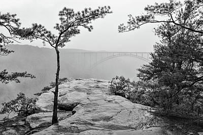 Photograph - Long Point Overlook by Lori Deiter
