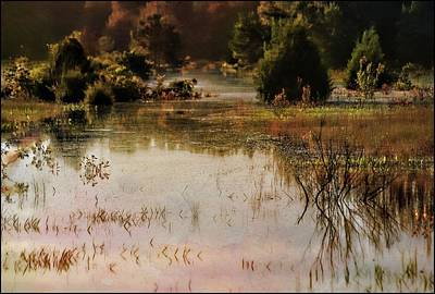 Photograph - Long Pond Misty Morning by Sheri McLeroy