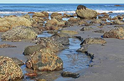 Photograph - Long Sands Beach York Maine Tide Pool 1 by Michael Saunders
