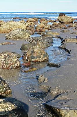 Photograph - Long Sands Beach York Maine Tide Pool 2 by Michael Saunders