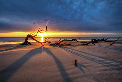 Photograph - Long Shadows At Sunrise by Debra and Dave Vanderlaan