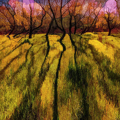 Photograph - Long Shadows In Molten Golds by Debra and Dave Vanderlaan