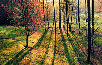 Photograph - Long Shadows by Kristin Elmquist
