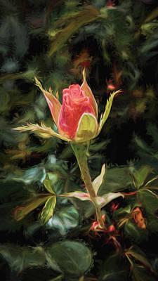 Photograph - Long Stemmed Rose by Susan Rissi Tregoning