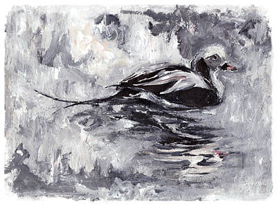 Painting - Long-tailed Duck by Abby McBride