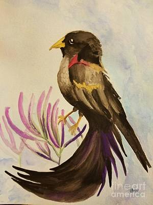 Painting - Long-tailed Widowbird by Maria Urso