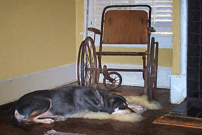Photograph - Long Wait - Dog - Wheelchair by Nikolyn McDonald