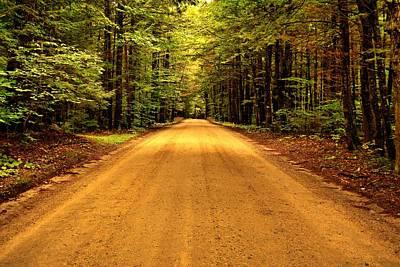 Photograph - Long Way Home - Bog Road by Naturally NH