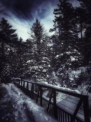 Wilkin Photograph - Long Winter's Nap by Scott Wendt Tom Wierciak