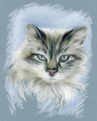 Pastel - Longhaired Cat With Blue Eyes by MM Anderson