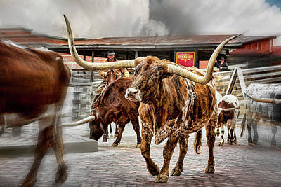 Cattle Drive Photograph - Longhorn by Kelley King
