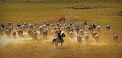 Cattle Drive Photograph - Longhorn Round Up by Michael Ciskowski