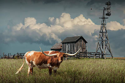 Randall Nyhof Royalty Free Images - Longhorn Steer in a Prairie pasture by Windmill and Old Gray Wooden Barn Royalty-Free Image by Randall Nyhof