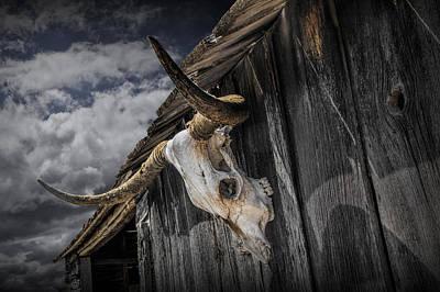 Photograph - Longhorn Steer Skull On The Barn by Randall Nyhof