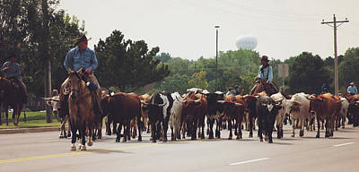 Photograph - Longhorns On The Move Along Chisholm Trail  by Toni Hopper