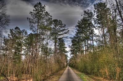 Jog Digital Art - Longleaf Trail by Rick Ward