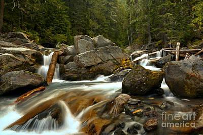 Photograph - Longmire Van Trump Creek by Adam Jewell