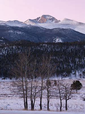 Photograph - Longs Peak From Moraine Park - Winter by Aaron Spong