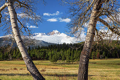 Longs Peak North Face Through The Trees Art Print by James BO Insogna