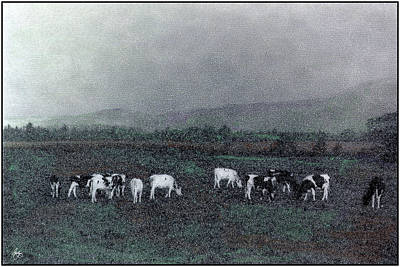 Photograph - Longview Cows by Wayne King