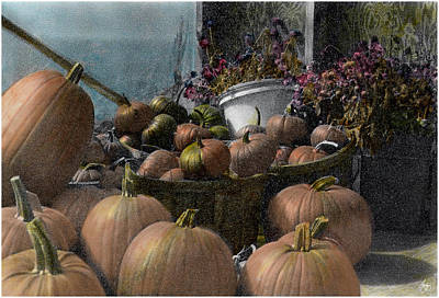 Photograph - Longview Farm Pumpkins And Flowers by Wayne King