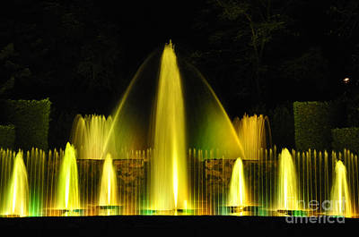 Photograph - Longwood Garden Nightscape 3 by Andrew Dinh