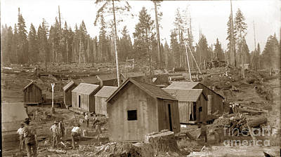 Photograph - Logging Camp Cabins On A Train Circa 1900 by California Views Mr Pat Hathaway Archives