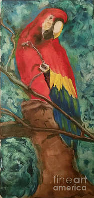 Macaw Mixed Media - Look At Me by Lori Moon