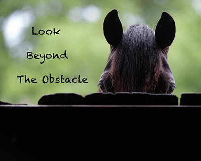 Look Beyond The Obstacle Art Print