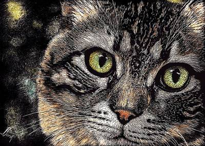 Watercolor Pet Portraits Drawing - Look Deeply Into The Cat's Eyes by Janet Funk