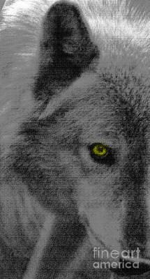 Alpha Wolf Mixed Media - Look Into My Eye by Debra     Vatalaro
