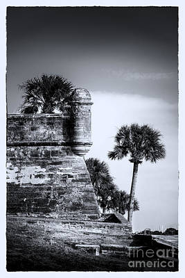 Augustine Photograph - Look Out - Bw by Marvin Spates