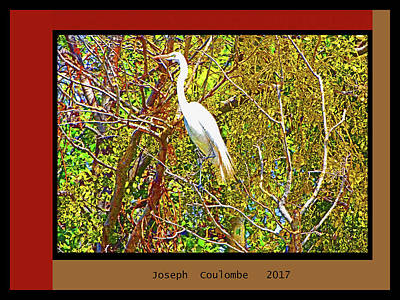 Digital Art - Lookin' 4 A Plus One by Joseph Coulombe