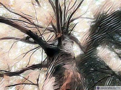 Lookin Up The Tree #digitalart Art Print by Michal Dunaj