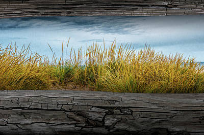 Photograph - Looking At Beach Grass Between The Fence Rails by Randall Nyhof