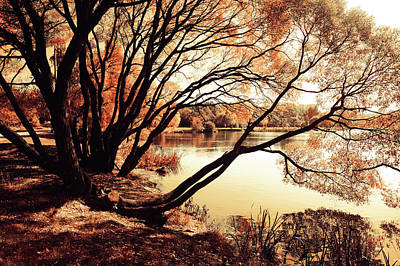 Photograph - Looking At The Mirror. Airy Lace Of Autumn by Jenny Rainbow