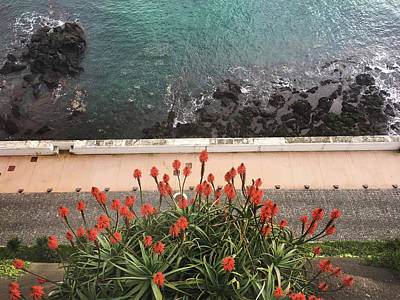 Photograph - Looking Down, Angra Do Heroismo, Terceira Island Of Portugal by Kelly Hazel